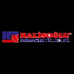 halisoglu-nakliyat-seo-referans